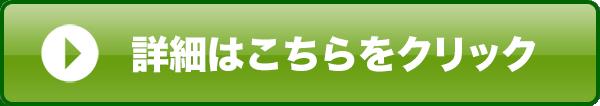 600_106_09grassgreen-solidframe